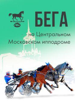 Испытание лошадей