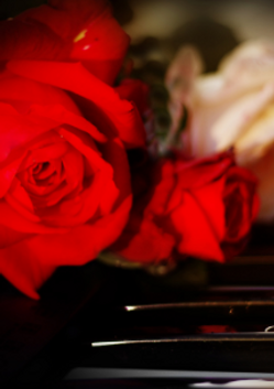 "Вечер зарубежного романса ""Цветы музыки"""