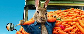 Купить билет на фильм Кролик Питер 2 в Армавире